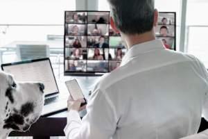Working in virtual teams